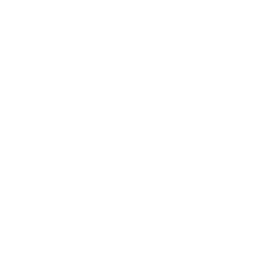 Centralized translation memory and glossary